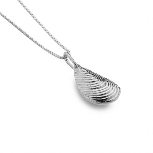 Mussel Shell Pendant Sterling Silver 925 Hallmarked All Chain Lengths